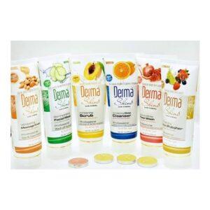 Derma Shine Whitening Facial Kit Pack of 6 200gm Each